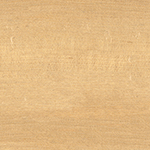 Natural Spalted Maple - C0006-67D04