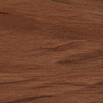 Eastern Walnut - 8125